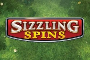 Sizzling Spins Slots
