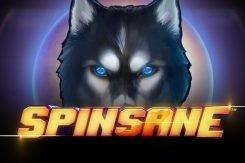 Spinsane Slots